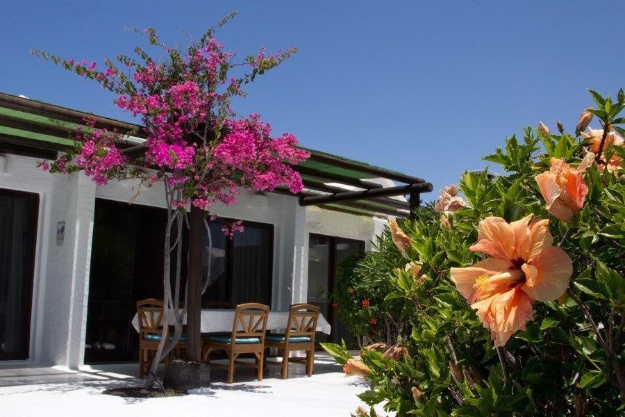 Villa Kamezi  - terras