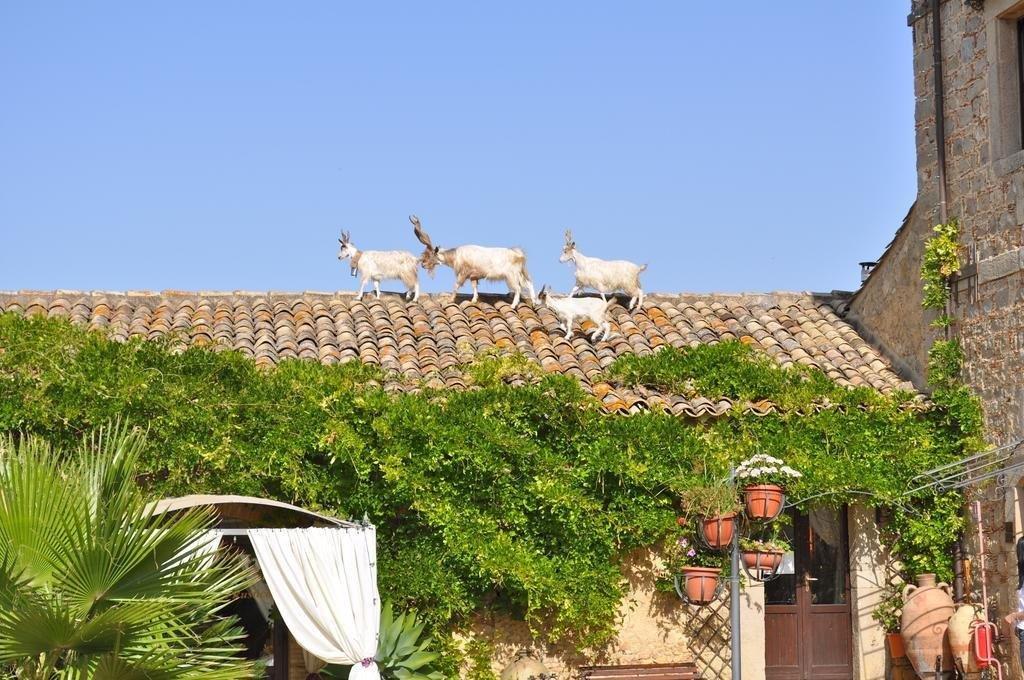 Hotel Vechia Masseria - uitzicht