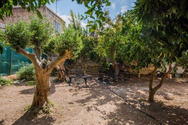 Villa Karydhia - tuin