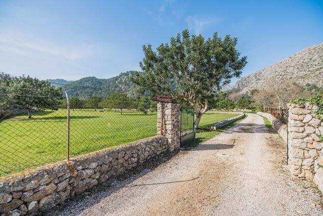 Villa Can Romani - oprijlaan