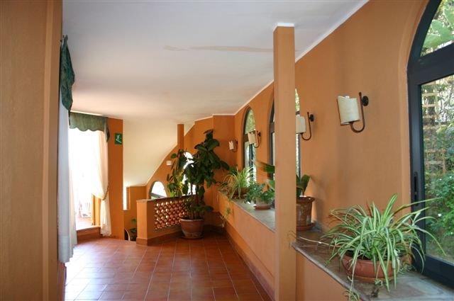 Hotel Andromaco