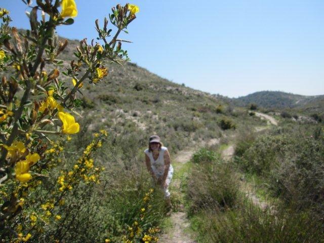 Wandelreis Kourion