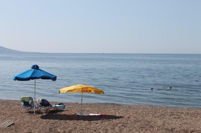 Fly-drive Cyprus - Strand bij Latsi