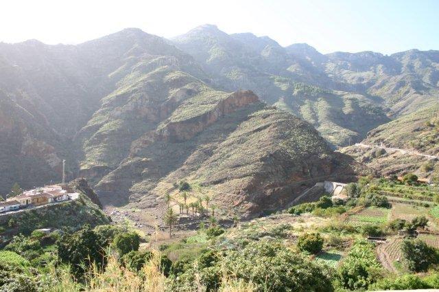 Fly-drive Tenerife - begroeide helling