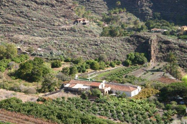 Fly-drive La Gomera - begroeide helling
