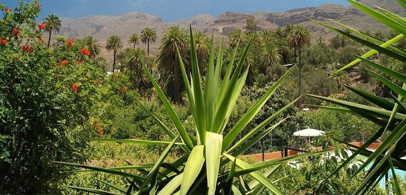 Casita La Fuente de la Flora - omgeving